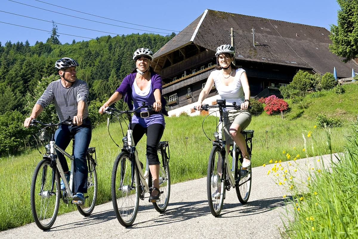 Bike tours around Gengenbach